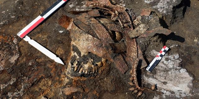 Details of calathos in situ.(Credit: Institute of Archaeology RAS)