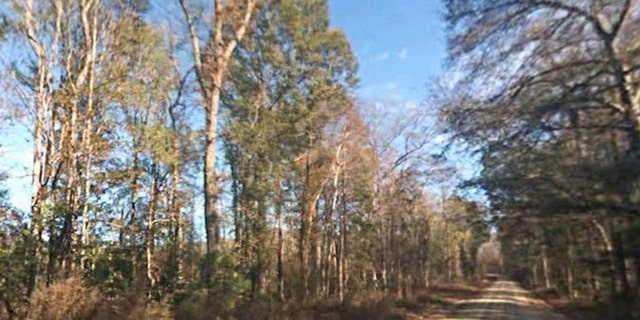 The area in Colleton County, outside of Charleston, S.C., where the accident occurred. (Google Maps)