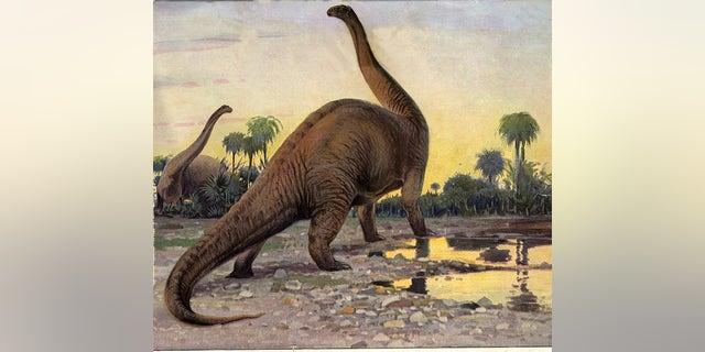 Drawing of the late Jurassic dinosaur, Brontosaurus.