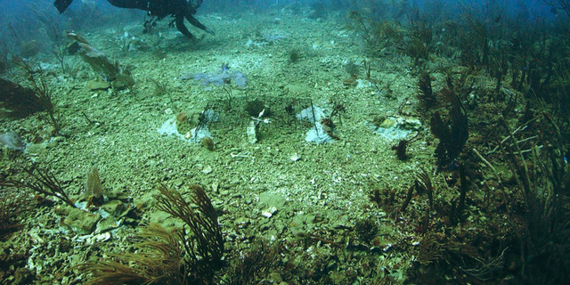 Technicolor coral once covered stretches of underwater reefs in the Florida Keys and beyond. But now, they are dying. Researchers are likening the reefs to abandoned underwater cities.