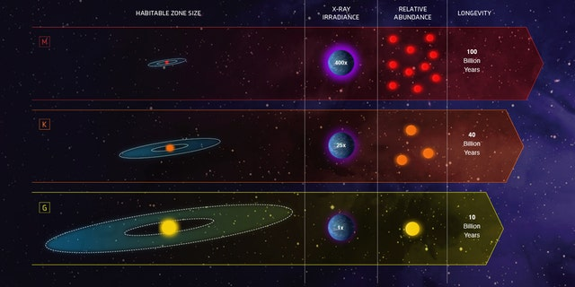 This infographic compares the characteristics of three classes of stars in our galaxy: Sunlike stars are classified as G stars; stars less massive and cooler than our Sun are K dwarfs, and even fainter and cooler stars are the reddish M dwarfs. (Credit: NASA, ESA, and Z. Levy (STScI)
