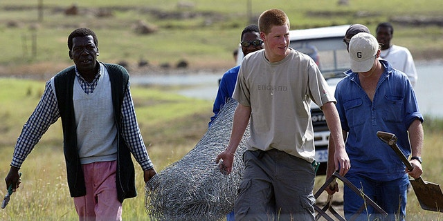Prince Harry and a group of workmen carry fencing that they will put up at the Mants'ase Children's Home in Mohale's Hoek in March of 2004. Prince Harry, spent his third week during a private visit to Africa building fences and planting trees at a rural orphanage in the small mountain kingdom of Lesotho.