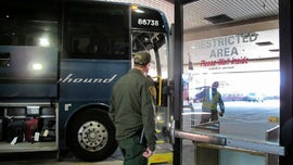 Greyhound to stop allowing Border Patrol agents to conduct immigration checks on buses without warrant