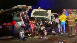 Georgia crash on Interstate 95 leaves 6 dead, including 3 children, officials say