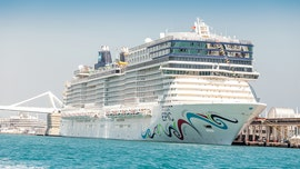 81 percent of COVID-19 patients on cruise were asymptomatic, study says, raising concerns on lifting lockdown