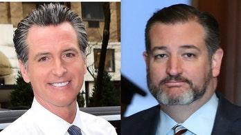 Ted Cruz slams California governor's 'leftist mind' for housing prescriptions tweet