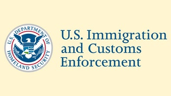 ICE: The history of US Immigration and Customs Enforcement