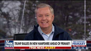 Lindsey Graham on New Hampshire primary: 'You鈥檙e seeing the demise of the Democratic Party'