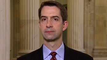 Tom Cotton: Supreme Court must act against left-wing 'resistance judges'