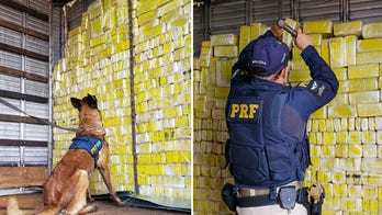 Brazilian police bust 'nervous' driver with nearly 2,000 pounds of marijuana hidden behind tractor-trailer wall