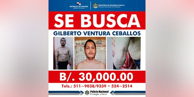 This Panama National Police internet wanted police shows Gilberto Ventura Ceballos who has escaped from a Panamanian prison for a second time, presumably with help from police, authorities in Panama City said Tuesday. (Panama's Public Security Ministry via AP)