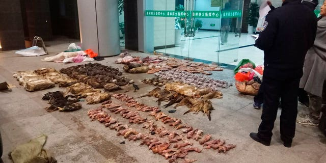 FILE: Police look at items seized from store suspected of trafficking wildlife in Guangde city in central China's Anhui Province.