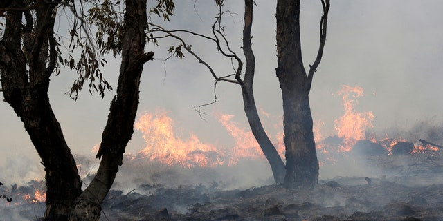 A spot fire burns near Bredbo, south of the Australian capital, Canberra, Sunday, Feb. 2, 2020.