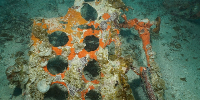 The iconic punched holes of the split-panel dive brakes from an SBD-5 Dauntless dive bomber are visible resting on the floor of the lagoon near the main debris site. (University of Delaware, courtesy of Dr. Mark Moline)