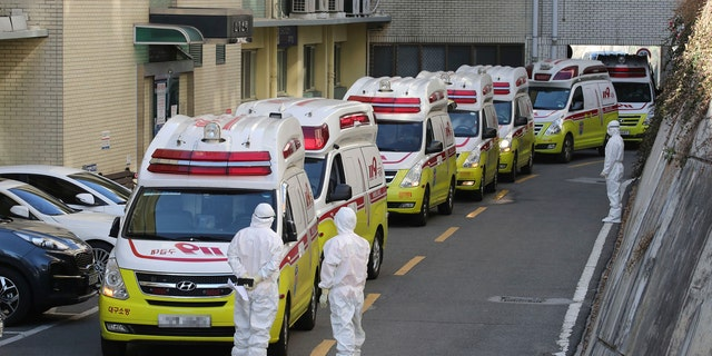 Ambulances carrying patients infected with the novel coronavirus arrive at a hospital in Daegu, South Korea, Sunday, Feb. 23, 2020.