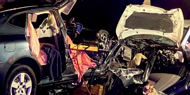The crash happened shortly after 2 a.m. in Liberty County, Ga. in the northbound lanes of Interstate 95.