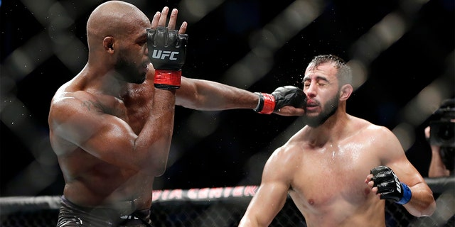Jon Jones, left, connects with a punch to the face of Dominick Reyes, right, during a light heavyweight mixed martial arts bout at UFC 247 in Houston. (AP Photo/Michael Wyke)