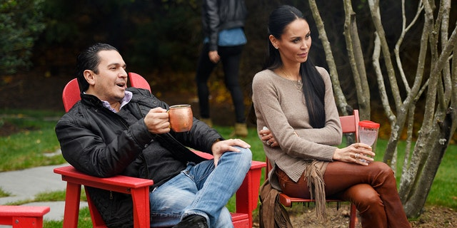 'Real Housewives of New York' stars Michael Wainstein and Julianne Wainstein reportedly got into a heated argument that led to her arrest.