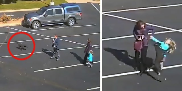 Surveillance footage shows a dog attack a child in a Colorado Springs, Colo. church parking lot.