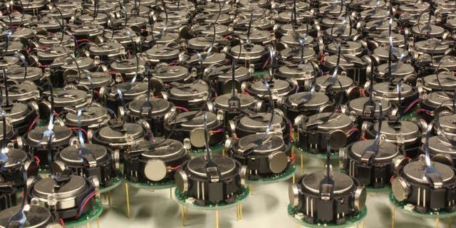 Kilobot là một ngàn robot được phát triển tại Đại học Harvard.