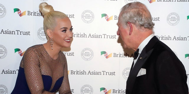 Katy Perry and Prince Charles shake hands. (Photo by Kirsty Wigglesworth - WPA Pool/ Getty Images)