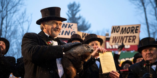 Punxsutawney Phil's handlers said that the groundhog has forecast an early spring.