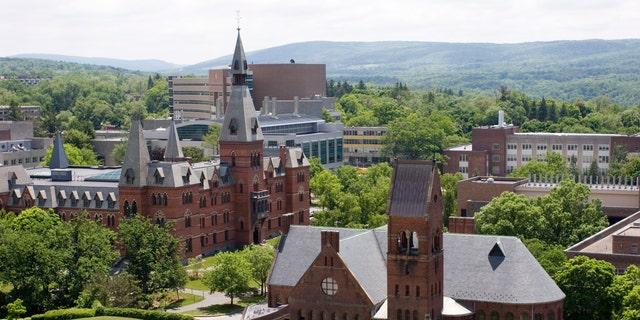 Edificios de la Universidad de Cornell vistos desde la Torre McGraw.