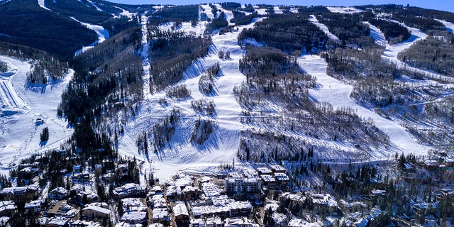 A skier from New Jersey died last week at Vail Mountain's Blue Sky Basin area after apparently getting caught in a chairlift and being asphyxiated by his coat.