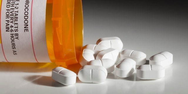 A bottle with a hydrocodone (the generic name for drug sold under other names by various pharmaceutical companies) label and hydrocodone tablets spilling out isolated on white background. Hydrocodone is a popular prescription semi-synthetic opioid that is used to treat moderate to severe pain. Hydrocodone is said to be one of the most common recreational prescription drugs in America.