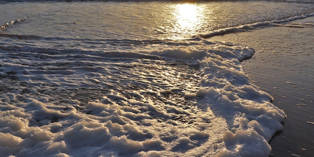 Sea foam forms when the organic and artificial matter in the ocean is agitated by wind and waves.
