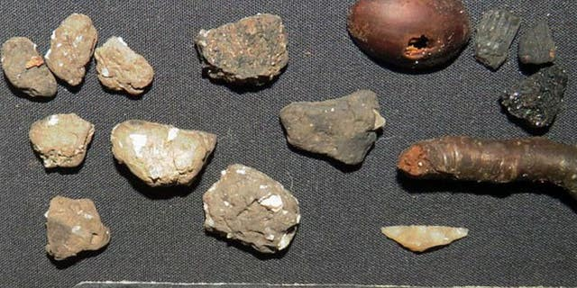 Rare pottery and tool fragments found at the site include(from left)portion of the Carinated bowl. On the right, from the same place, there are some old twigs and hazelnuts.