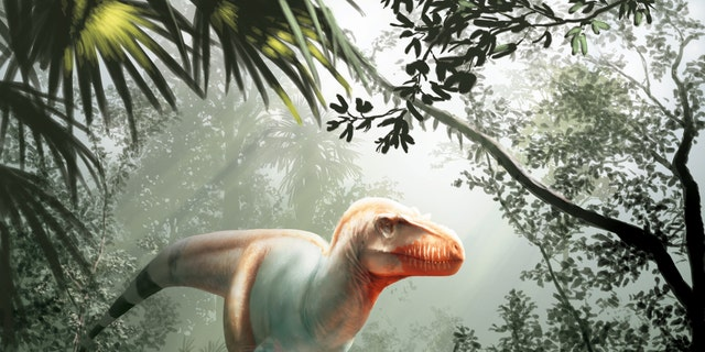 Researchers have only two skulls from this new species, but here is what the dinosaur may have looked like nearly 80 million years ago.