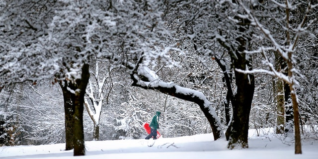 Denise Hendricks walks up a snow covered hill while sledding at Hafer Park following a winter storm in Edmond, Okla., Wednesday, Feb. 5, 2020.