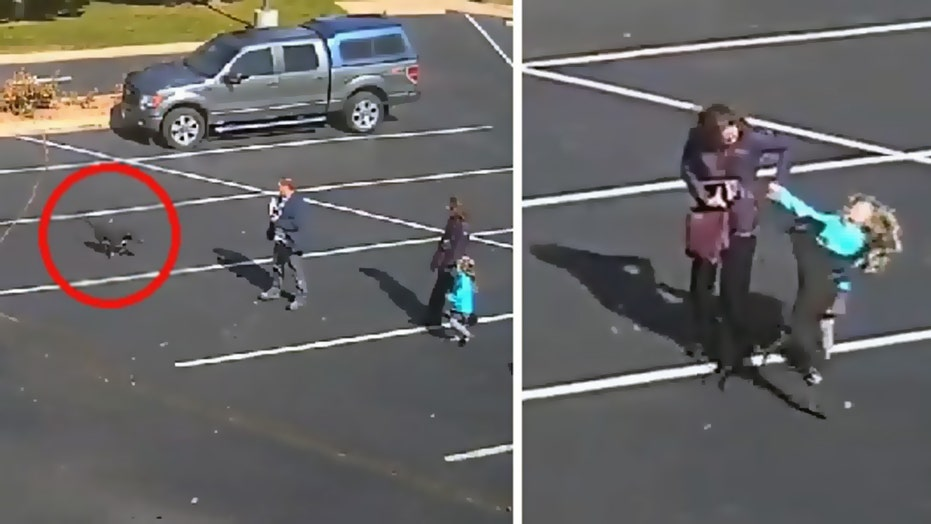 Caught on Video: Dog attacks 5-year-old girl