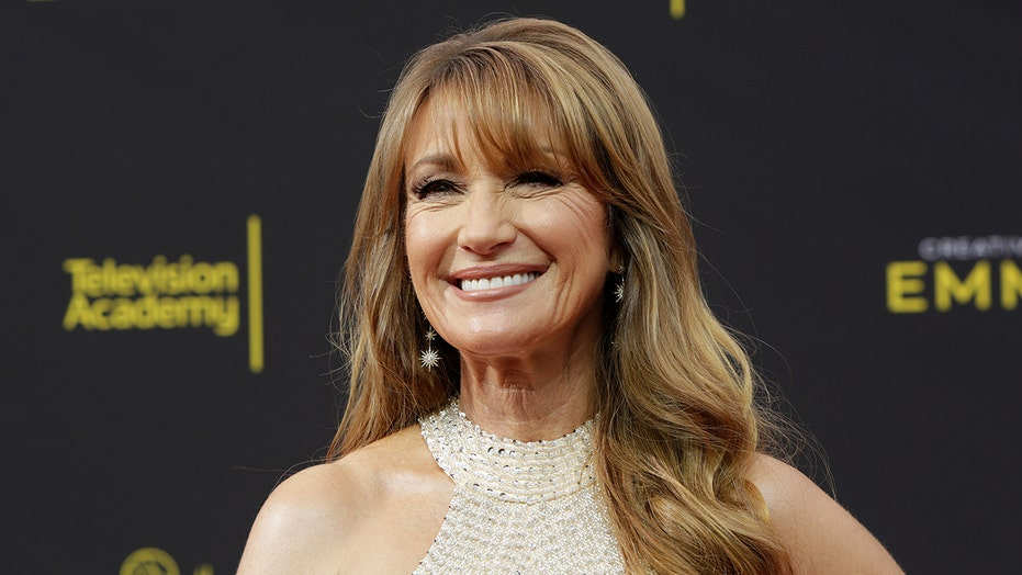 Jane Seymour says she fell, fractured her kneecap on 'Harry Wild' set: 'It's really painful'