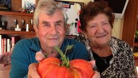 Coronavirus kills elderly Illinois couple hours apart in hospital
