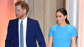 Meghan Markle got Prince Harry's advice while recording her voice-over for Disney's 'Elephant'