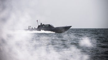Navy plans large new fleet of 'mothership'-controlled drone boats