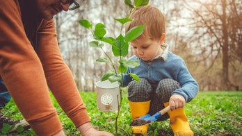 Spring cleaning: How to organize the backyard