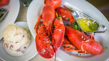 Coronavirus outbreak is sinking lobster prices, reports claim