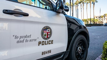 LAPD officer attacked inside police station; suspect in custody: reports