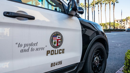 LAPD officer wounded in head during attack inside police station; suspect in custody: reports