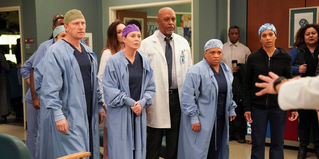 'Grey's Anatomy' - (L-R) Kevin McKidd, Ellen Pompeo, James Pickens Jr, and Chandra Wilson