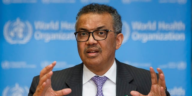 Tedros Adhanom Ghebreyesus, director general of the World Health Organization, speaks during a news conference on updates regarding on the novel coronavirus COVID-19, at the WHO headquarters in Geneva, Switzerland, in an undated photo. (Associated Press)
