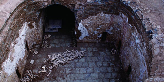 The donkey bones were discovered in Cui Shi's tomb.