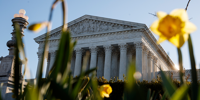 Earlier this month, the U.S. Supreme Court announced it would review a challenge to the ACA's constitutionality after a group of states led by Texas claimed there was no longer a legal justification for it.