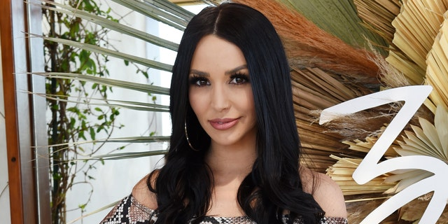 Scheana Shay revealed she's pregnant following a miscarriage in June.