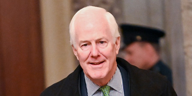 Sen. John Cornyn, R-Texas, spoke on the Senate floor Wednesday about a boy who nearly committed suicide because of remote learning. (REUTERS/Erin Scott)