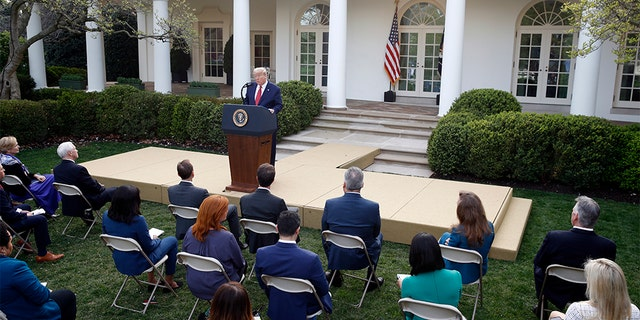 President Donald Trump during the coronavirus task force briefing in the Rose Garden of the White House on Sunday. (AP Photo/Patrick Semansky)
