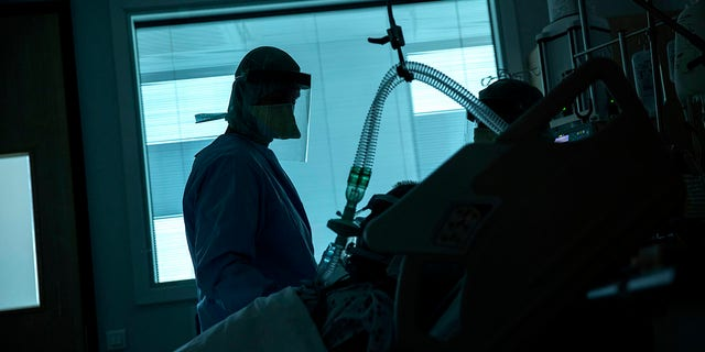 A health worker in the intensive care ward observes a COVID-19 patient at a hospital in Belgium. (AP Photo/Francisco Seco, File)